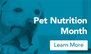 nutrition-blog-banner