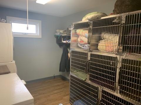 Dog Kennel Room